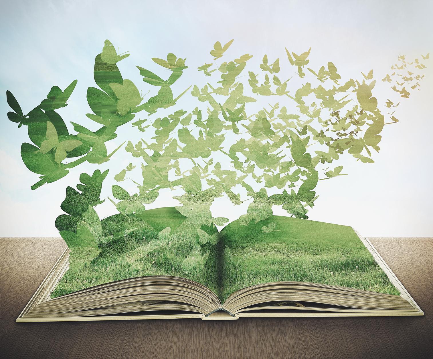 magic book, grass, butterflys