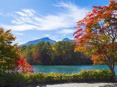 autumn_img3